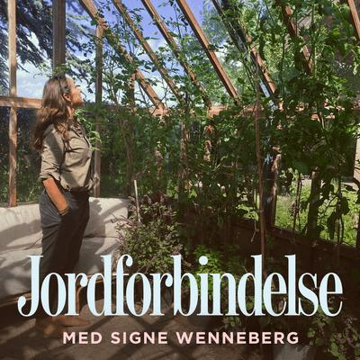 Jordforbindelse med Signe Wenneberg - Episode 19: Himmelhøje tomatplanter og tårnhøje haveambitioner