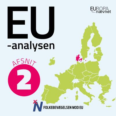 EU-analysen: Ærlig snak om EU - Euroen: Om forbeholdet, fejlene og fremtiden