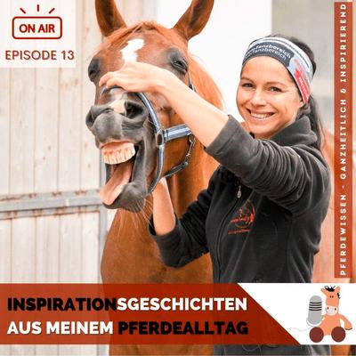 Pferdewissen - ganzheitlich & inspirierend mit Sandra Fencl - Inspirierende Pferdegeschichten aus meinem Pferdeberufsalltag