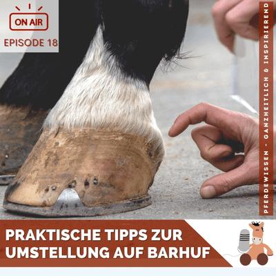 Pferdewissen - ganzheitlich & inspirierend mit Sandra Fencl - Praktische Tipps zur Umstellung auf Barhuf