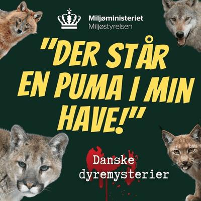 Der står en puma i min have - Trailer - Ny podcastserie om danske dyremysterier