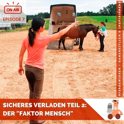 """Pferdewissen - ganzheitlich & inspirierend mit Sandra Fencl - Sicheres Verladen, Teil 2: Der oft vergessene """"Faktor Mensch"""""""