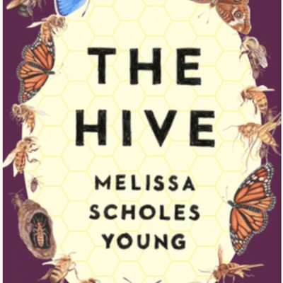 The Avid Reader Show - Episode 621: Melissa Scholes Young - The Hive