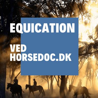Equication - VANDLØBEBÅND (9. dec) Genoptræning og andet nyt fra USA