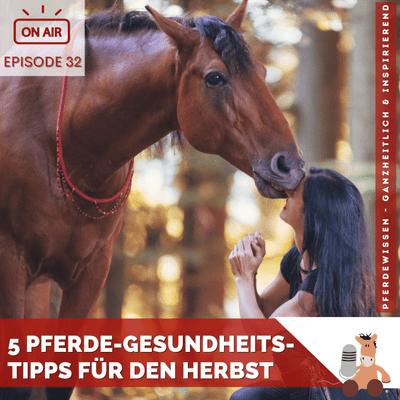 5 Pferde-Gesundheits-Tipps für den Herbst