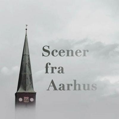 Scener fra Aarhus - Opslag fundet ved Vestre Strandallé Station, nordgående perron