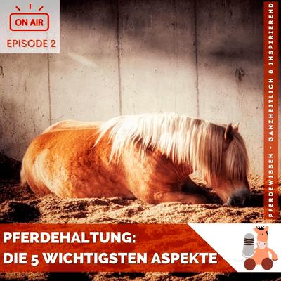 Pferdewissen - ganzheitlich & inspirierend mit Sandra Fencl - Pferdehaltung: Die 5 wichtigsten Aspekte plus Checkliste