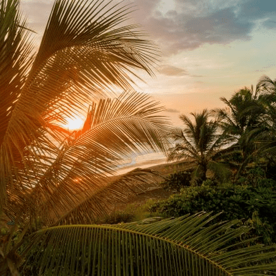 Lioran Schlafengehen – kleine Reisen zum Einschlafen und Entspannen - Dem Winter entfliehen – Pura Vida Teil 1
