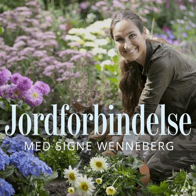 Jordforbindelse med Signe Wenneberg - podcast