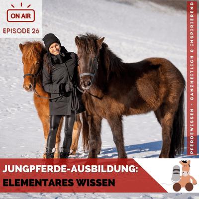 Pferdewissen - ganzheitlich & inspirierend mit Sandra Fencl - Jungpferde-Ausbildung: Elementares Wissen