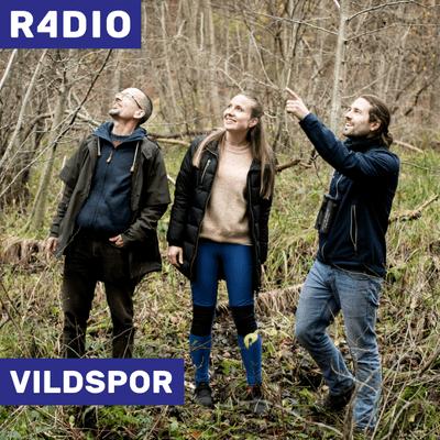 VILDSPOR - Den nye kridttid