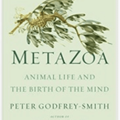The Avid Reader Show - Episode 586: Metazoa Peter Godfrey-Smith