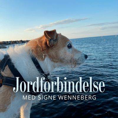 Jordforbindelse med Signe Wenneberg - Episode 12: Skab et rigt dyreliv i haven