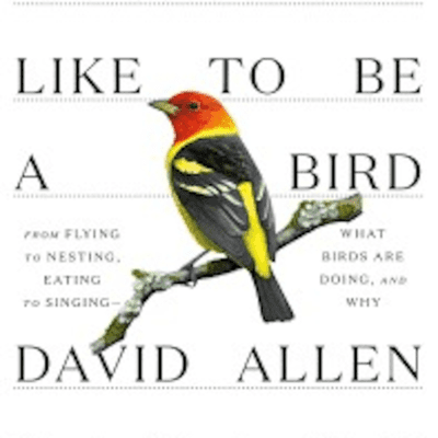 The Avid Reader Show - What It's Like To Be A Bird  David Sibley