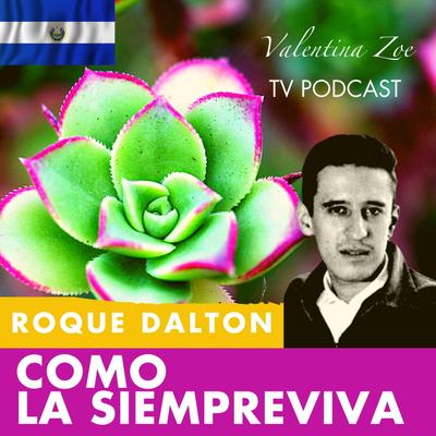 Valentina Zoe - COMO LA SIEMPREVIVA 🌷🌄 ROQUE DALTON   Mi Poesía es como La Siempreviva Roque Dalton   Valentina Zoe