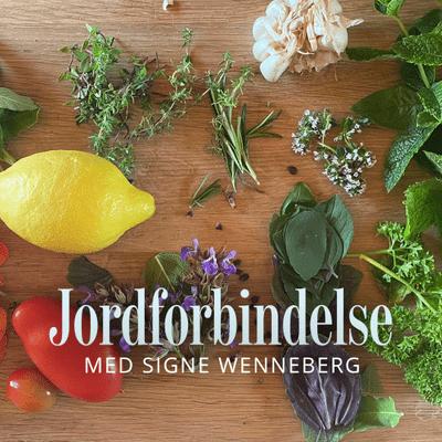 Jordforbindelse med Signe Wenneberg - Episode 14: Billig og bæredygtig mad til sommerens mange gæster