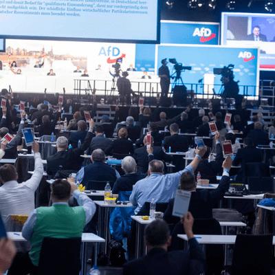 Vis à vis - AfD vor der Bundestagswahl – national normal?