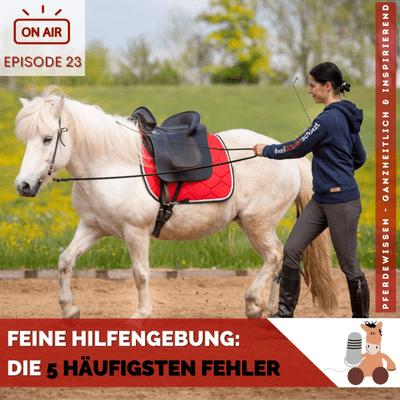 Pferdewissen - ganzheitlich & inspirierend mit Sandra Fencl - Feine Hilfengebung: Die 5 häufigsten Fehler