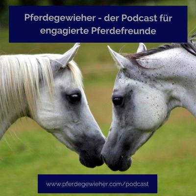 Pferdegewieher - Pferdewissen für engagierte Pferdemenschen - Episode 19 - Wohlfühlmomente mit dem Pferd