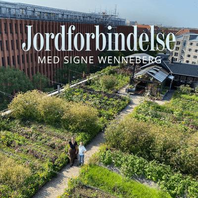 Jordforbindelse med Signe Wenneberg - Episode 26: ØsterGRO – en tagfarm midt i byen