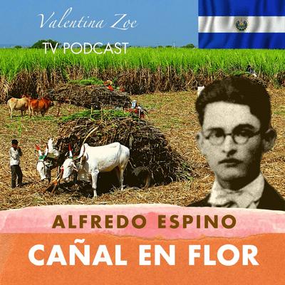 Valentina Zoe - CAÑAL EN FLOR ALFREDO ESPINO 🎋💮   Poema Cañal en Flor de Alfredo Espino 🍯   Valentina Zoe Poesía