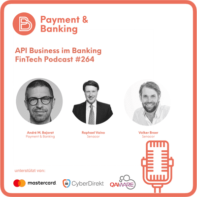 Payment & Banking Fintech Podcast - API Business im Banking