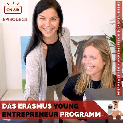 Das Erasmus Young Entrepreneur-Programm