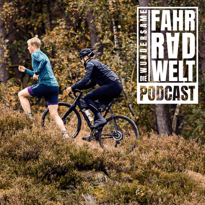 Die Wundersame Fahrradwelt - Triathlon vs Ultracycling mit Hannes und Lasse Popken (Plattfuß Podcast)