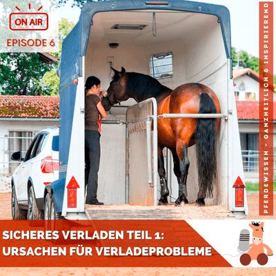 Pferdewissen - ganzheitlich & inspirierend mit Sandra Fencl - Sicheres Verladen, Teil 1: Häufige Ursachen für Verladeprobleme