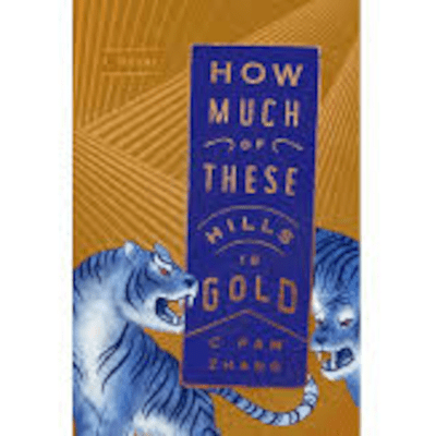 The Avid Reader Show - How Much Of These Hills Is Gold   C. Pam Zhang